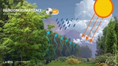 Vliv zelených fasád na prostředí