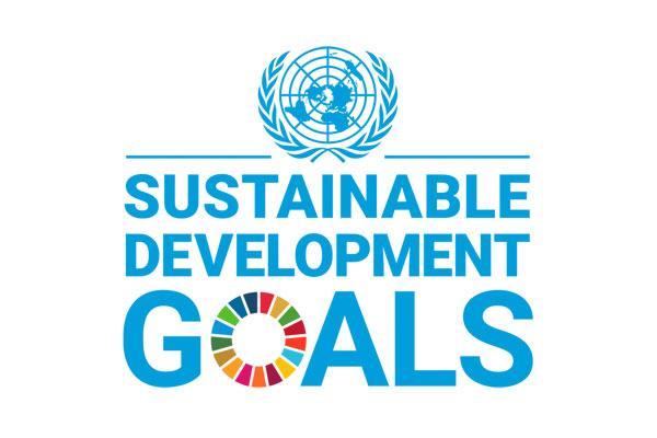 Sustainable Business & Circular Economy